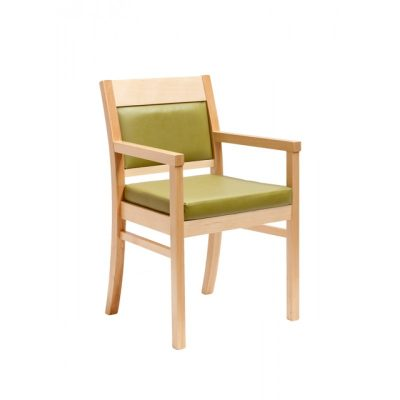 DC06 Dining Chair