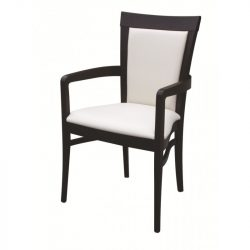 DC15 Dining Chair