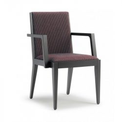 DC17 Dining Chair