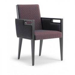DC22 Dining Chair