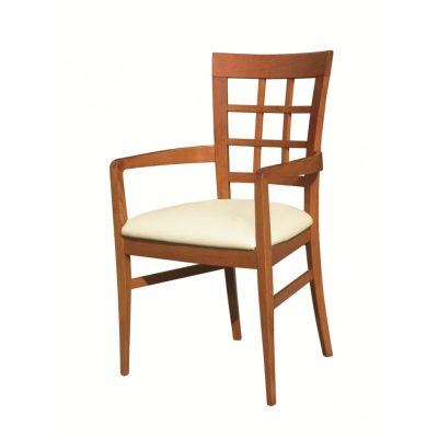 DC23 Dining Chair
