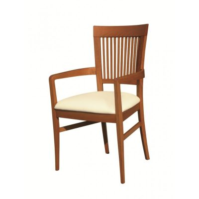 DC25 Dining Chair