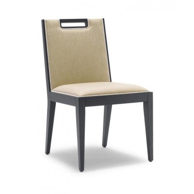 DC28 Dining Chair