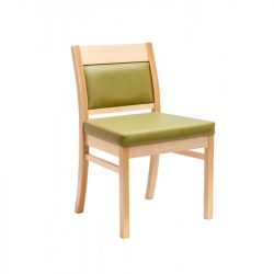 DC41 Dining Chair