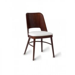 DC55 Dining Chair